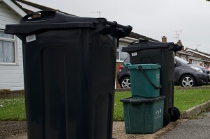 Wheelie bins and food waste out for collection
