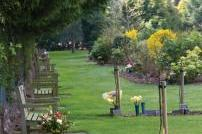 Picture of Weeley Crematorium Gardens