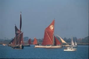 Barges at Brightlingsea