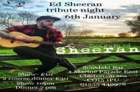 Ed Sheeran Tribute