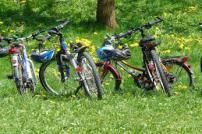 Bicycles in the countryside