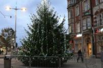 Christmas tree in Clacton town square