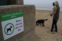 Dogs are welcome on many of Tendring's beaches as this sign shows