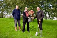 Tree planting at Rush Green
